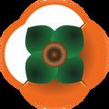 sochi_15_logo_v_internet_120x120